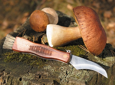 грибной нож фото