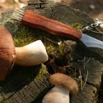 Грибной нож или опасное оружие для «тихой охоты»